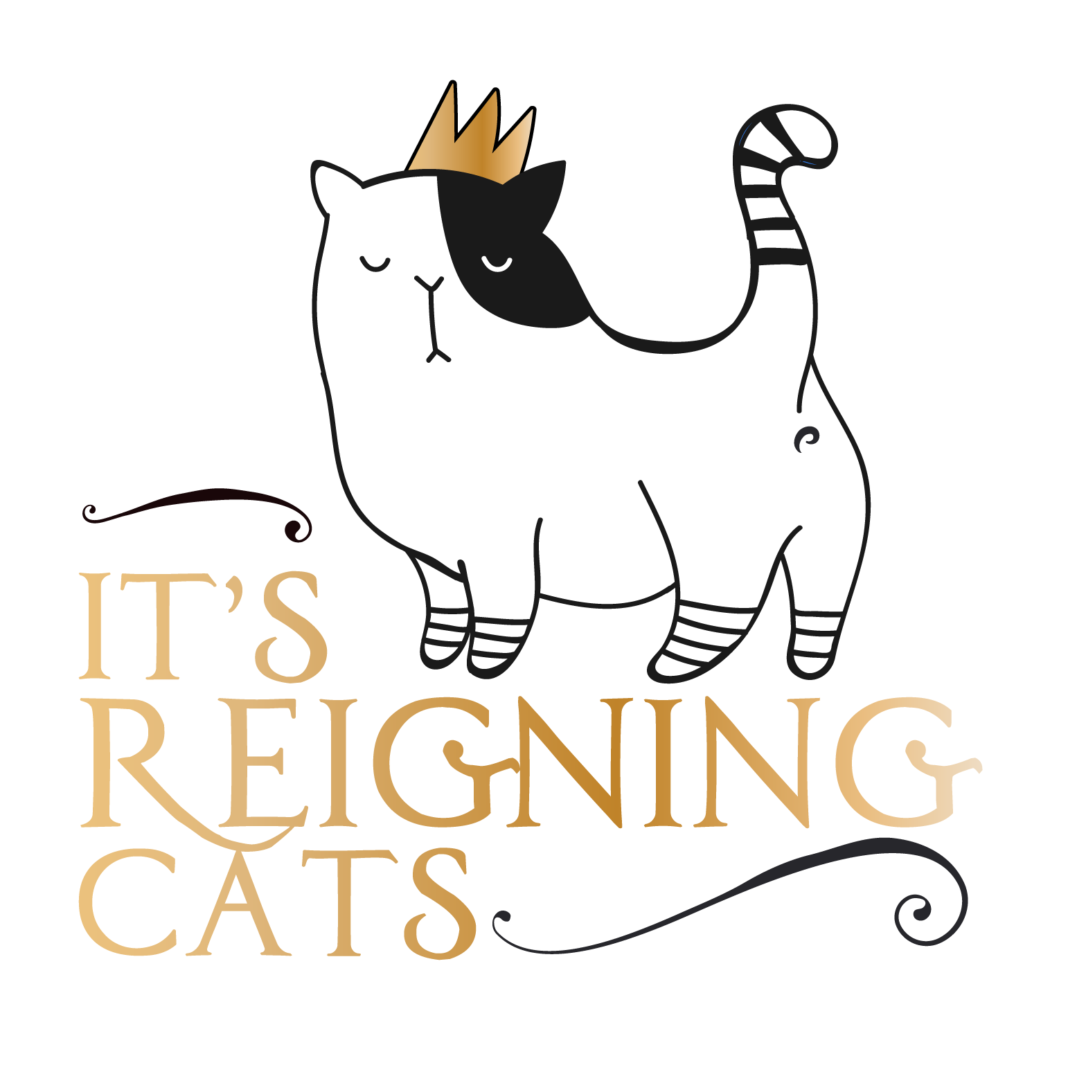 It's Reigning Cats